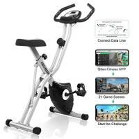 Profun Esercizio di Bicicletta Fitness Bici Spinning Bike Cyclette per Casa Cyclette con Resistenza Magnetica Regolabile a 8 Livelli e Fasce da Allenamento Indoor Cycling Bike con App (Grigio-2)